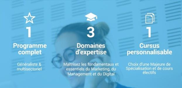 Mastère Spécialisé ® Marketing Management et Digital (MMD)